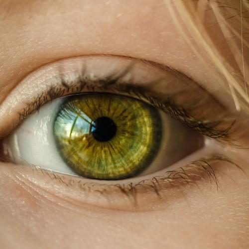 12 อาหารเสริมบำรุงสายตา ยี่ห้อไหนดี เหมาะสำหรับคนใช้สายตามาก วิตามินเอ ลูทีน