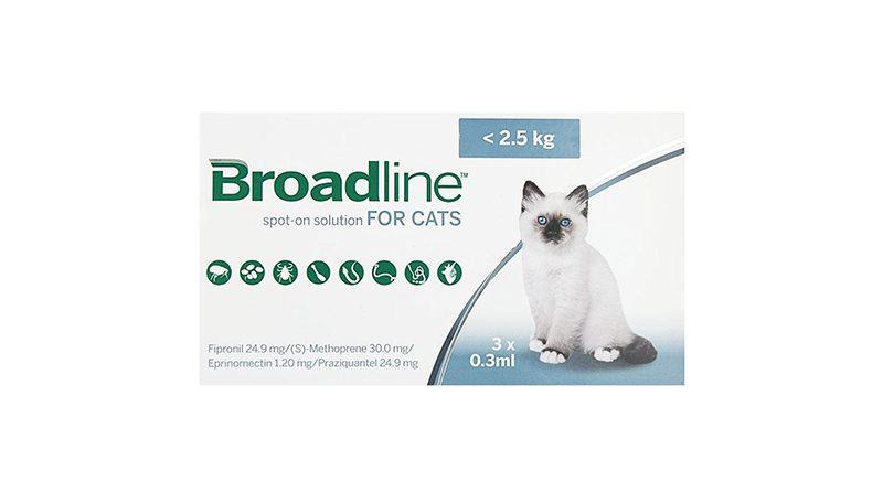 Broadline Cat Spot-on Solution for CAT
