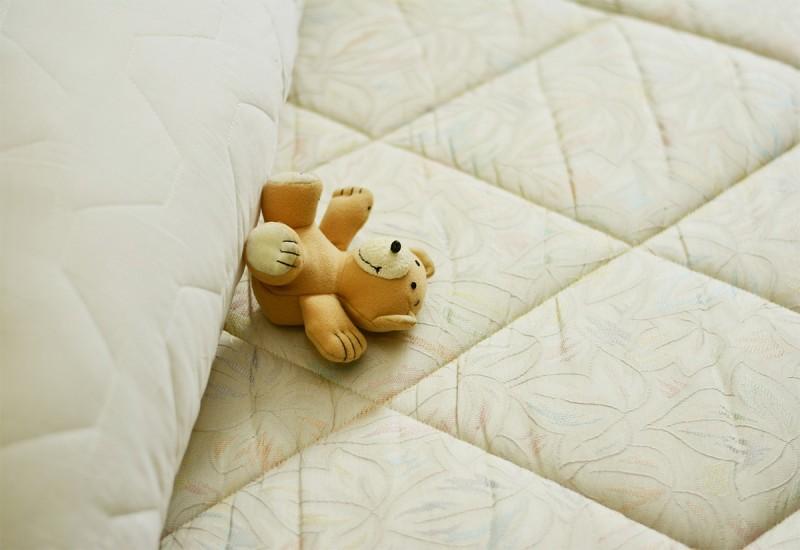 ที่นอนพับได้ ฟูกแบบบาง ยี่ห้อไหนดี ทั้งสวย ทั้งคุ้มราคา