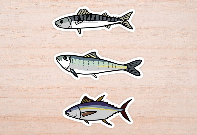 ปลาแมคเคอเรล, ปลาซาร์ดีน และปลาทูน่า