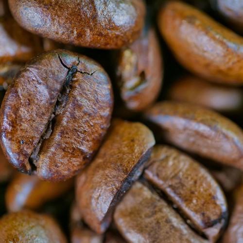 เมล็ดกาแฟสำหรับทำกาแฟเย็น ยี่ห้อไหนดี 2021