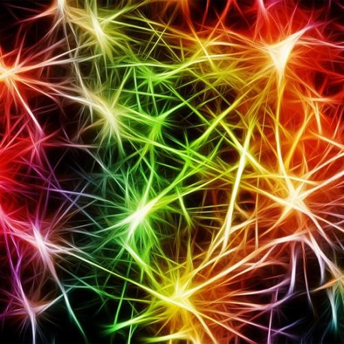 10 อาหารเสริมวิตามิน B Complex ยี่ห้อไหนดี ช่วยบำรุงระบบประสาทให้แข็งแรง 2021