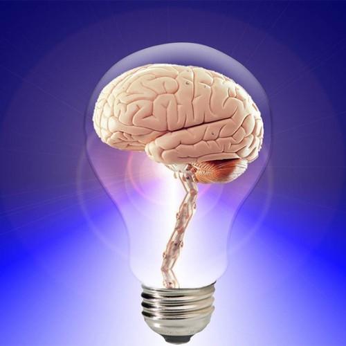 10 วิตามินบำรุงปราสาทและสมอง ยี่ห้อไหนดี มีสารอาหารช่วยไปบำรุงสมอง 2021