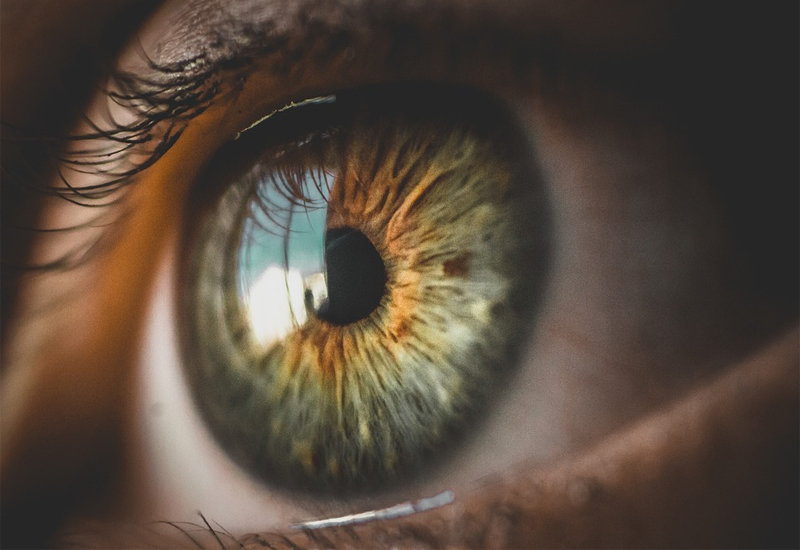 10 วิตามินบำรุงสายตา ยี่ห้อไหนดี คุ้มค่า คุ้มราคา 2021