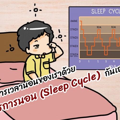 มาจัดการเวลานอนของเราด้วยวงจรการนอน (Sleep Cycle) กันเถอะ